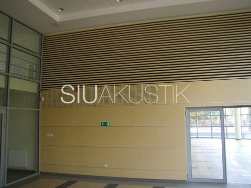 Siuakustik Grillewood System-Wall finish (4)