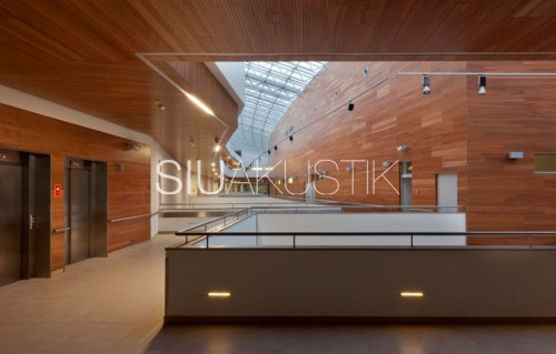 Siuakustik Panel System-Grooved ceiling finish (3)
