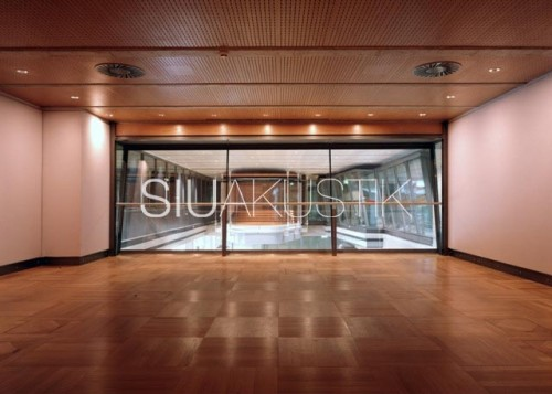 Siuakustik Panel System- Perforated ceiling finish (20)