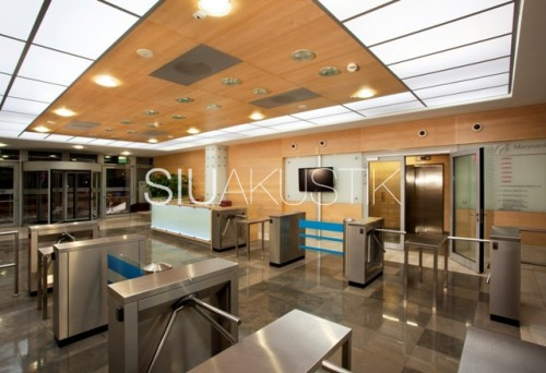Siuakustik Panel System- Perforated ceiling finish (22)