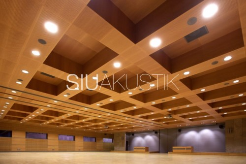 Siuakustik Panel System- Perforated ceiling finish (24)