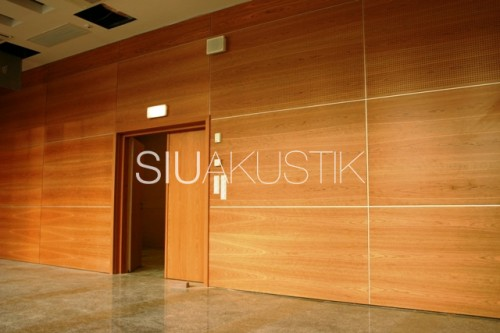 Siuakustik Panel System- Perforated wall finish (10)